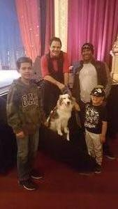 RAY attended The Stunt Dog Experience - Early Show on May 13th 2018 via VetTix