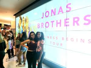 Carl T attended Jonas Brothers: Happiness Begins Tour on Nov 15th 2019 via VetTix