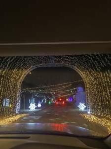 Brian attended Christmas Lights in LA on Dec 2nd 2020 via VetTix